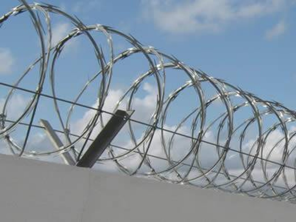 Import Export Anping County: Welded razor wire fence