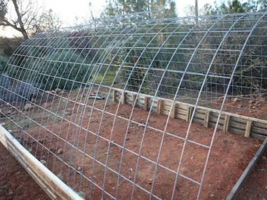 Import Export Anping County: Welded Wire Cattle Panels Not Only for ...