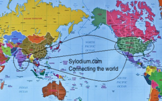 India - US  (Sylodium, import export business)