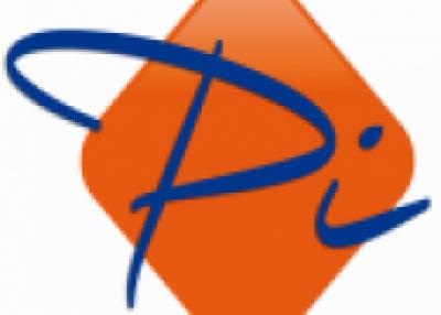 Platinum Integrations - Africa Consulting