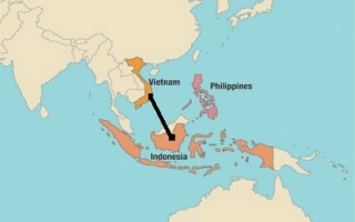 Vietnam and Indonesia (Sylodium, export to Vietnam from Indonesia)