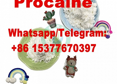 Procaine Hydrochloride CAS 51-05-8 with best price