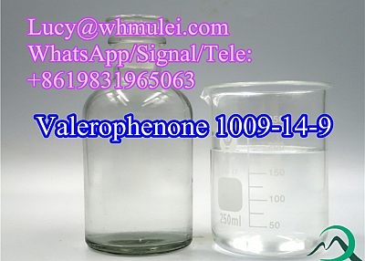 Butyl Phenyl Ketone CAS 1009-14-9 China Raw Organic Reagent Valerophenone in Safety Delivery