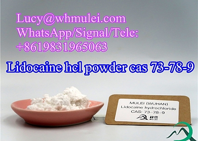 Lidocaine hcl powder cas 73-78-9 for pain relief 100% pass customs to Canada USA Europe