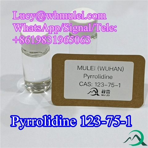 Pyrrolidine CAS 123-75-1 High Purity Flavors and Spices Pyrrolidine China Manufacture