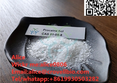 Buy procaine powder procaine from factory with good price +8619930503282