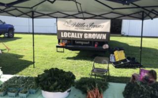 Locally grown, fresh vegetables