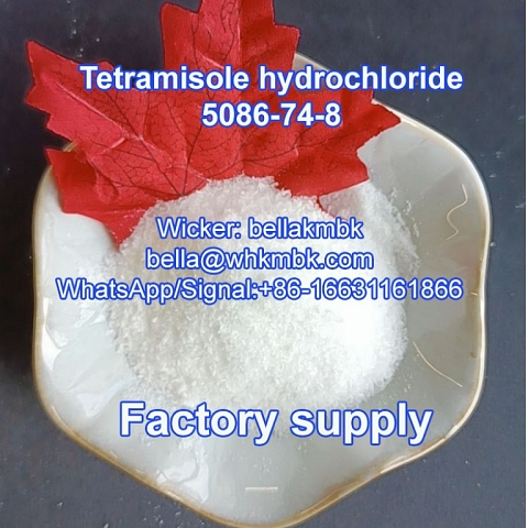 Factory supply Tetramisole hcl cas 5086-74-8 on hot sa;e
