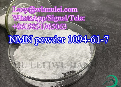 Nicotinamide Mononucleotide for Anti Aging CAS 1094-61-7 China Top NMN Supplement
