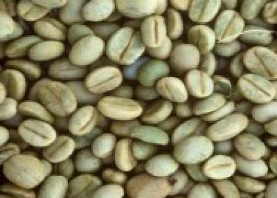 Brazilian Specialty Coffees