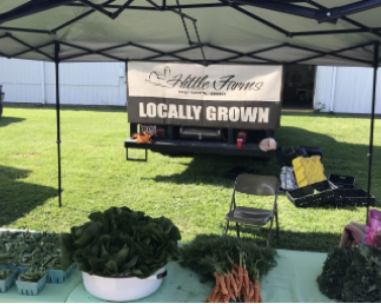 Locally grown, fresh vegetables