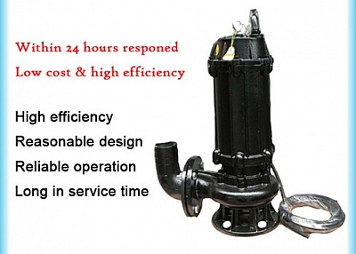 WQ Series Submersible Sewage Pump 50WQ10-10-0.75