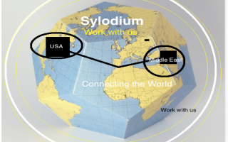 USA – Middle East business (Sylodium, the global platform)