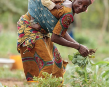 Build your Web at Africa – China Fresh Veggies trade?