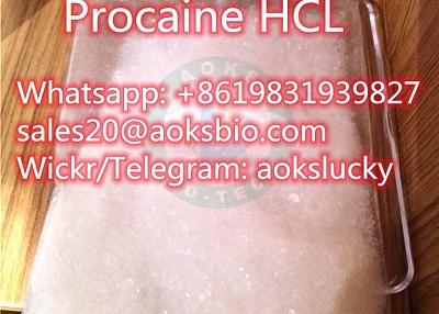 Procaine Hydrochloride / Procaine HCl CAS 51-05-8