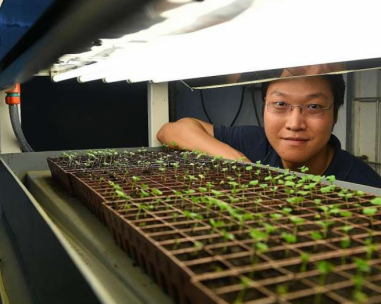 Should land paves way for high-tech farming?