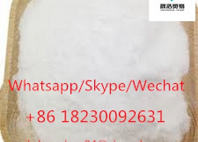 Top supplier pmk oil pmk powder pmk glycidate cas 13605-48-6 99.9% White powder shenghao