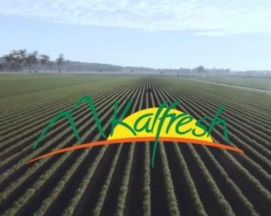 Kalfresh Vegetables, farm into multi-million dollar business