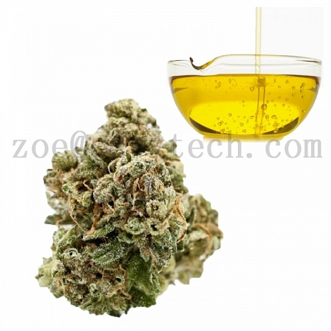 CBD oil hemp powder cas