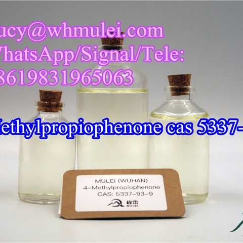 Manufacturer High Quality 4-Methylpropiophenone CAS 5337-93-9 Free of Custom Clearance