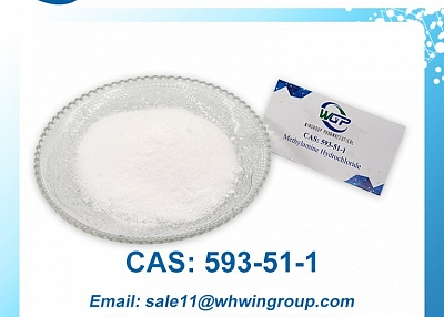 Methylamine Hydrochloride CAS 593-51-1