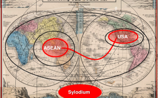 USA –  ASEAN business (Sylodium, import and export)
