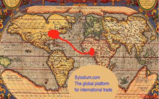U.S. – Ghana (Sylodium, import export business)