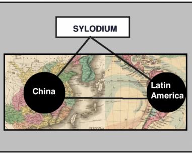 中国 - 拉美业务 (Sylodium信息,世界贸易)