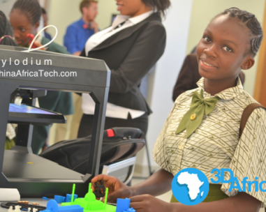 Chinese 3D Printing businesses to African countries.