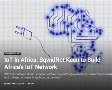 IoT in Africa. Who could build a real network?