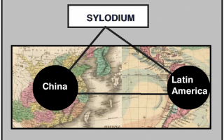 CHINA – Latin America business (Sylodium, the global directory)