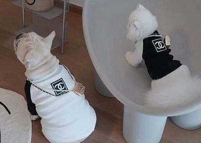シャネル ペット服 シュプリーム と ディオール 犬用品