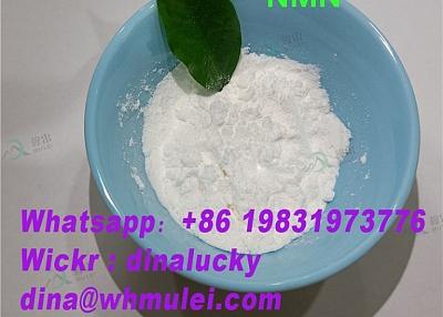 Top NMN powder 1094 61 7 supplier sell buy beta-NMN powder price