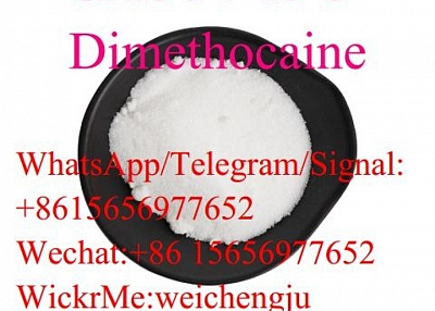Dimethocaine CAS 94-15-5