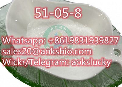 Procaine Hydrochloride / Procaine HCl CAS 51-05-8, Factory Price CAS 51-05-8