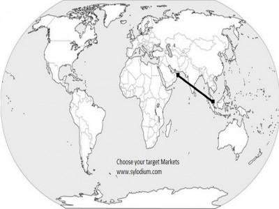 UAE and Singapore (Sylodium,…